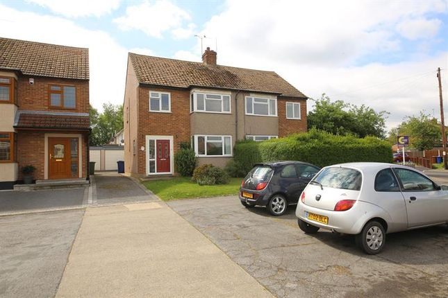 Thumbnail Semi-detached house for sale in Prospect Avenue, Stanford-Le-Hope