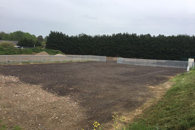 Thumbnail Land to let in Colchester