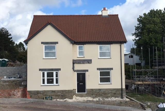 Thumbnail Detached house for sale in Lower Broad Park, West Down, Ilfracombe