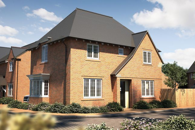"""Thumbnail Detached house for sale in """"The Rainham"""" at Oakley Wood Road, Bishops Tachbrook, Leamington Spa"""