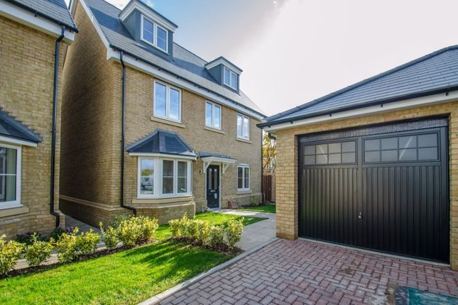 Thumbnail Detached house for sale in Talbot Street, Hitchin