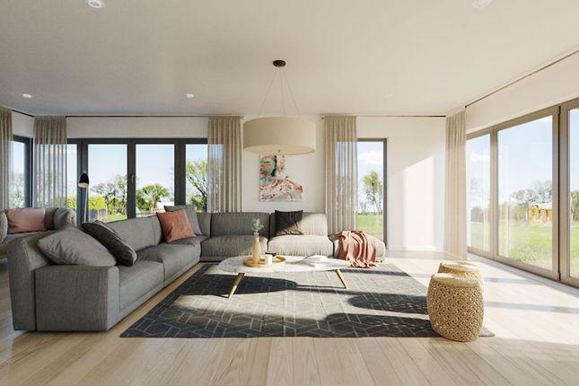 Concept Art - Interior