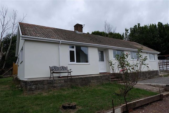 Thumbnail Detached bungalow to rent in Laura Street, Barry, Vale Of Glamorgan