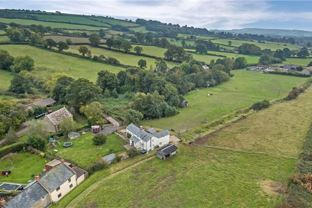 Thumbnail Detached house for sale in Watery Lane, Hewish, Crewkerne, Somerset