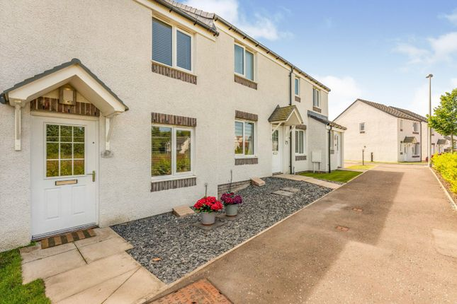 Thumbnail Terraced house for sale in Rose Hip Crescent, Larbert, Stirlingshire