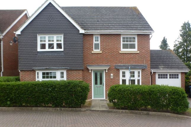 4 bed detached house to rent in Sassoon Close, Salisbury SP2