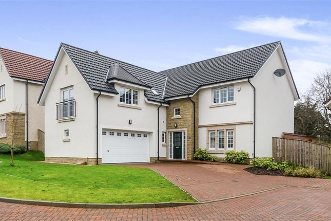 Thumbnail Detached house for sale in Low Borland Way, Waterfoot, Glasgow