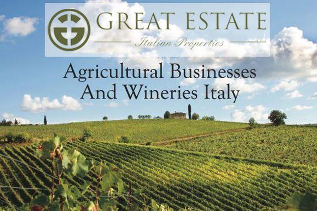 Thumbnail Farmhouse for sale in Grosseto (Town), Grosseto, Tuscany, Italy