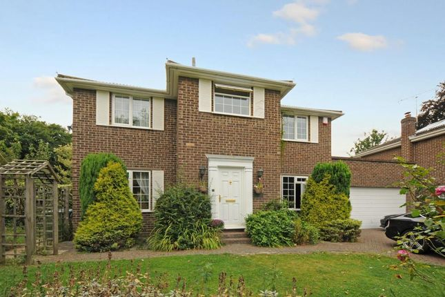 Thumbnail Detached house to rent in Goughs Lane, Bracknell