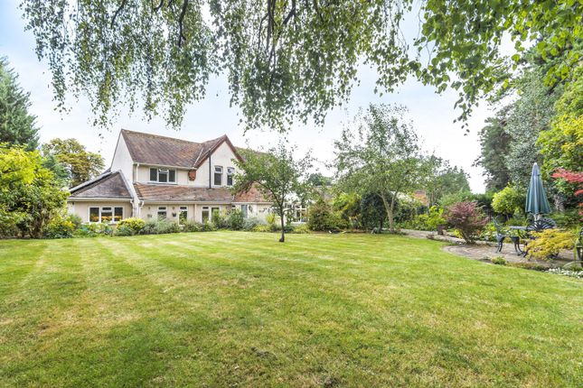 Thumbnail Detached house for sale in Bath Road, Calcot, Reading