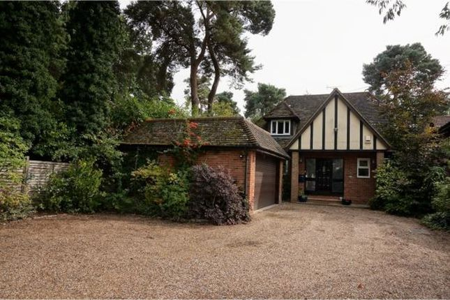 Thumbnail Detached house to rent in Nine Mile Ride, Wokingham