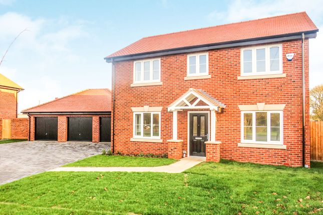 Thumbnail Detached house for sale in Chaffinch Walk, Beck Row, Bury St. Edmunds