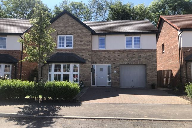 Thumbnail Detached house for sale in Waterfall Gardens, Guisborough