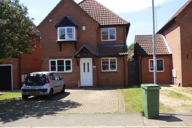 Thumbnail Detached house to rent in Snowley Park, Whittlesey, Peterborough