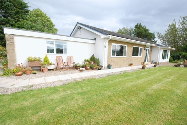Thumbnail Bungalow for sale in Catton, Hexham