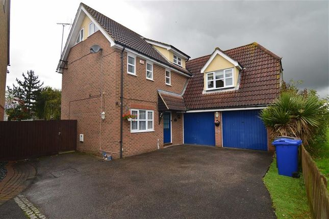 Thumbnail Detached house for sale in Juniper Drive, South Ockendon, Essex