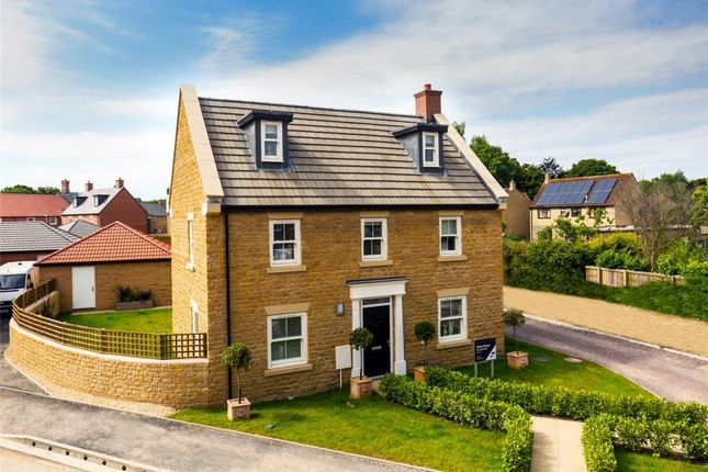 Thumbnail Detached house for sale in Long Orchard Way, Mertoch Leat, Martock, Somerset