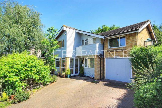 Thumbnail Detached house for sale in Melford Road, Sudbury
