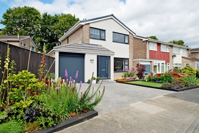 Thumbnail Detached house for sale in Bedale Close, Durham
