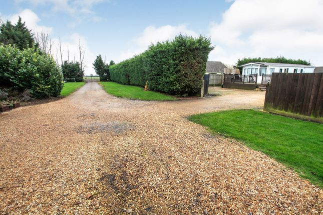 Thumbnail Detached bungalow for sale in Meadow Road, Milking Nook, Peterborough