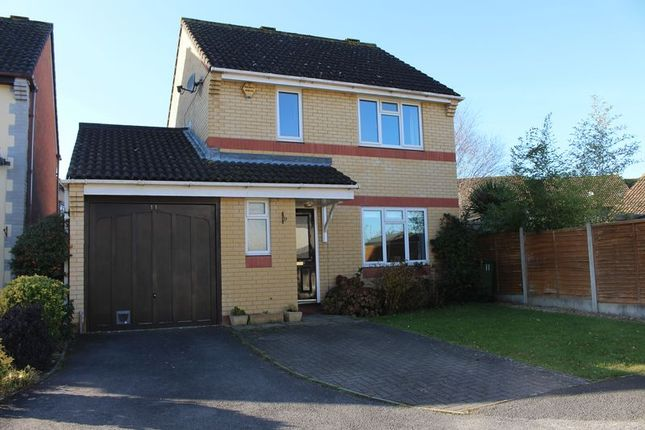 Thumbnail Detached house to rent in Azalea Close, Calne