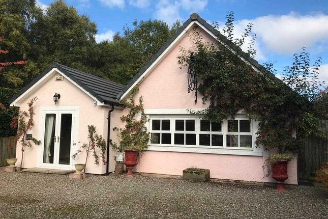 Thumbnail Cottage to rent in The Cottage, New St Davids, Madderty