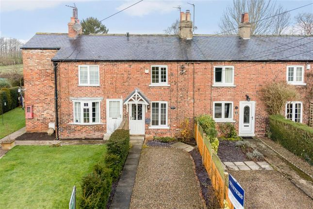 Thumbnail Terraced house for sale in Post Office Row, Bilton-In-Ainsty
