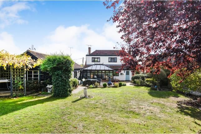Thumbnail Detached house for sale in Maple Avenue, Braintree