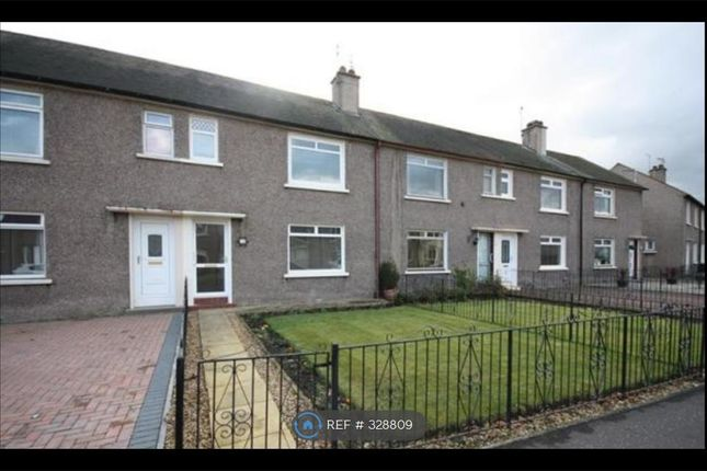 Thumbnail Terraced house to rent in Hamilton Road, Falkirk