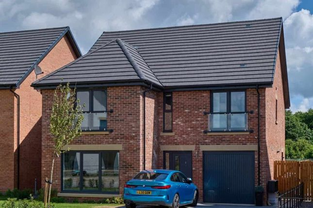 """Thumbnail Detached house for sale in """"Lawrie Grand"""" at Sessay Grange, Nunthorpe, Middlesbrough"""