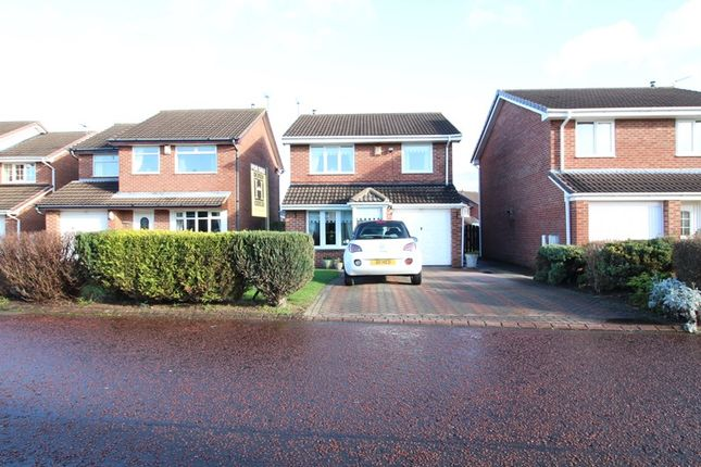 Thumbnail Detached house to rent in Troutbeck Way, South Shields