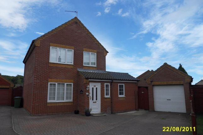Thumbnail Detached house to rent in Puddle Duck Lane, Worlingham, Beccles, Suffolk