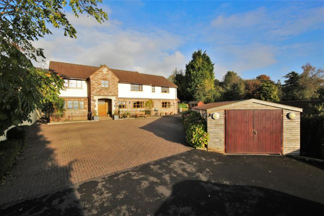 Thumbnail Property for sale in New Road, Draycott, Cheddar