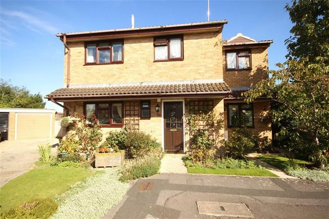 Thumbnail Detached house for sale in Keyneston Road, Nythe, Wilts