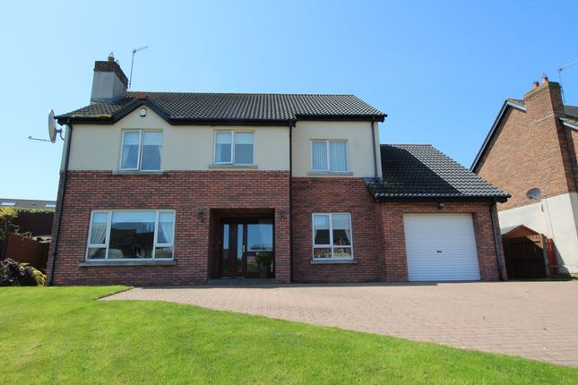 Thumbnail Detached house for sale in Riverford, Whitehead