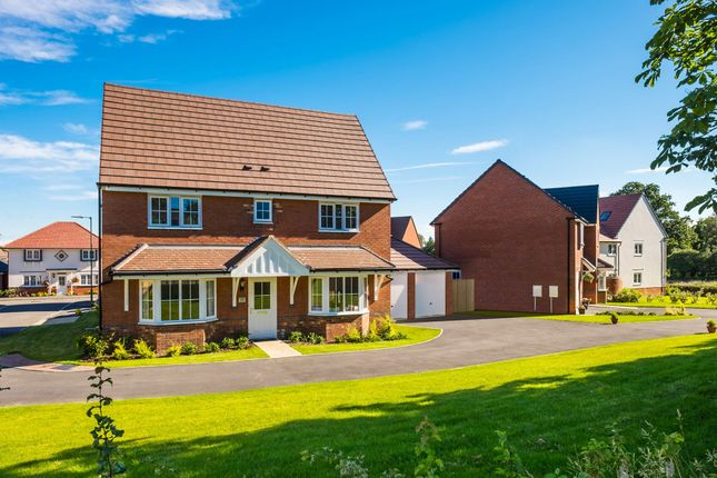 "Thumbnail Detached house for sale in ""Alnwick"" at Blackthorn Crescent, Brixworth, Northampton"