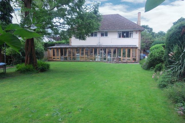 Thumbnail Detached house for sale in Milbrook, Esher