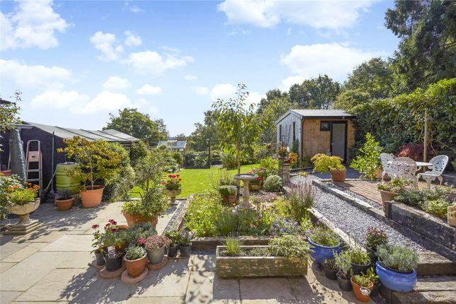 Picture No. 21 of Woodland Cottages, Park Lane, Brook, Godalming GU8