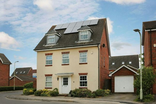 Thumbnail Detached house for sale in Benham Drive, Spencers Wood, Reading