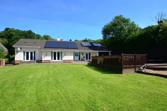 Thumbnail Detached bungalow for sale in Swimbridge, Barnstaple
