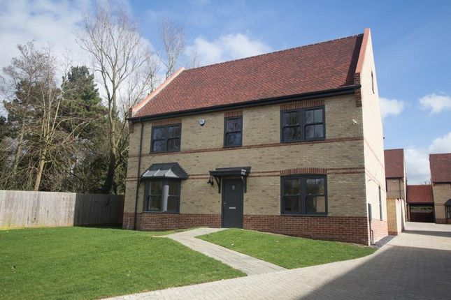 Thumbnail Detached house for sale in Lower Road, Stuntney, Ely