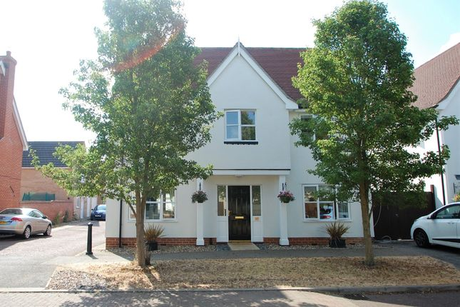 Thumbnail Detached house for sale in Shelley Avenue, Tiptree, Colchester, Essex