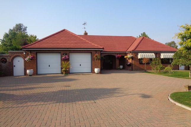 Thumbnail Detached bungalow for sale in Delph Fields, Long Sutton