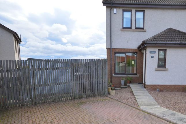 Thumbnail Semi-detached house to rent in Honeyberry Crescent, Rattray, Blairgowrie