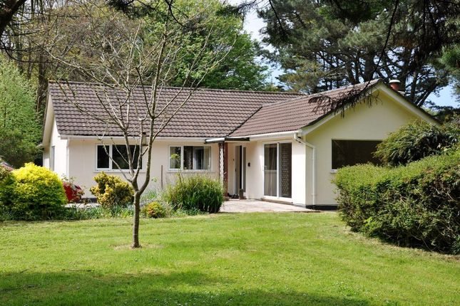 Thumbnail Bungalow to rent in The Woodlands, Tehidy Park, Tehidy, Camborne