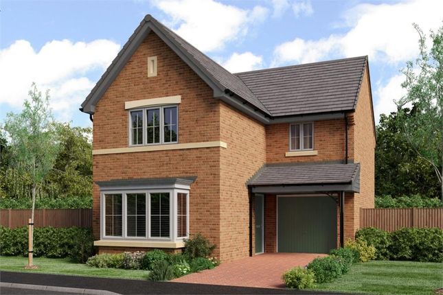 "Thumbnail Detached house for sale in ""The Malory"" at Low Lane, Acklam, Middlesbrough"