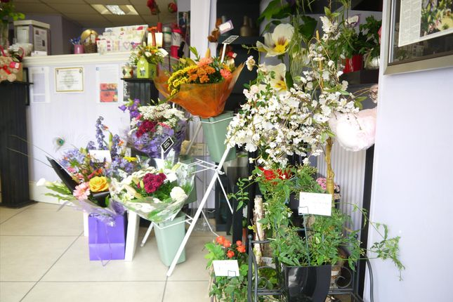 Photo 6 of Florist OL15, Lancashire