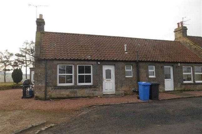Thumbnail Bungalow to rent in Cottage Nether, St. Andrews, Fife