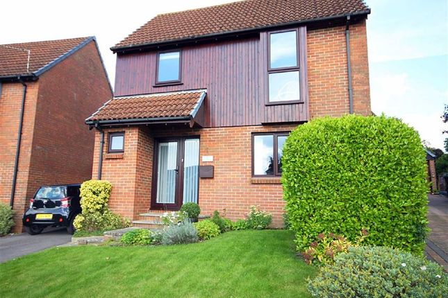 Thumbnail Detached house for sale in Lacy Drive, Wimborne