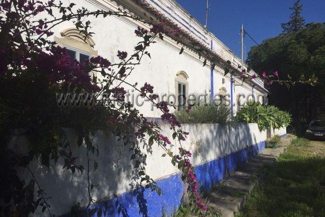 Santa Catarina Da Fonte Do Bispo, 8800, Portugal